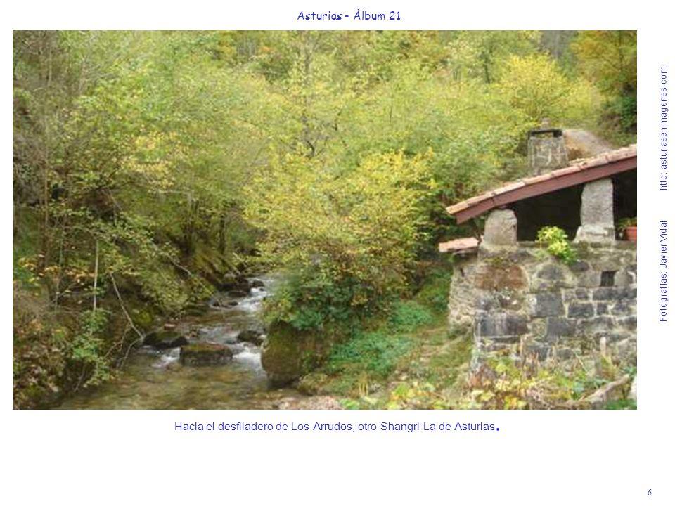 7 Asturias - Álbum 21 Fotografías: Javier Vidal http: asturiasenimagenes.com Es difícil calificar tanta belleza otoñal de esta maravillosa Ruta de Los Arrudos.
