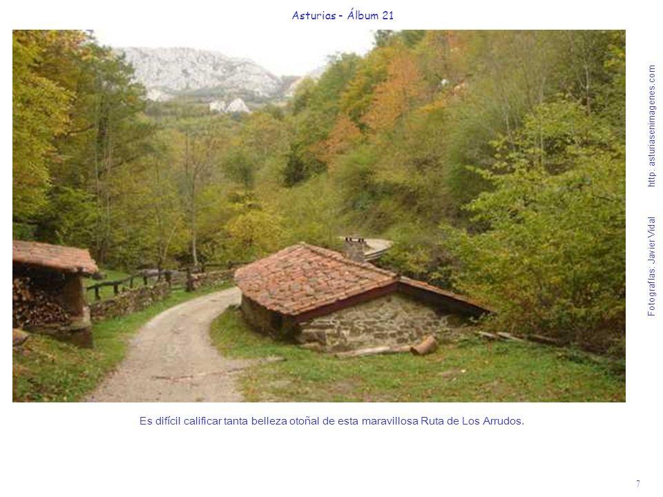 7 Asturias - Álbum 21 Fotografías: Javier Vidal http: asturiasenimagenes.com Es difícil calificar tanta belleza otoñal de esta maravillosa Ruta de Los