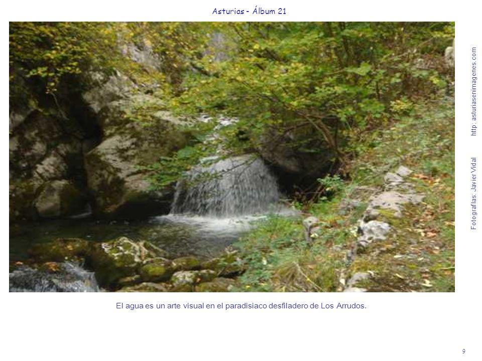 9 Asturias - Álbum 21 Fotografías: Javier Vidal http: asturiasenimagenes.com El agua es un arte visual en el paradisiaco desfiladero de Los Arrudos.