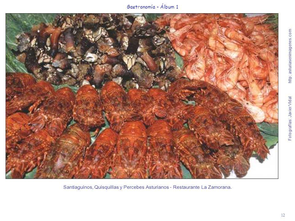 12 Gastronomía - Álbum 1 Fotografías: Javier Vidal http: asturiasenimagenes.com Santiaguinos, Quisquillas y Percebes Asturianos - Restaurante La Zamor