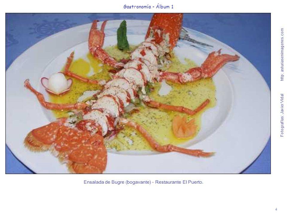 4 Gastronomía - Álbum 1 Fotografías: Javier Vidal http: asturiasenimagenes.com Ensalada de Bugre (bogavante) - Restaurante El Puerto.