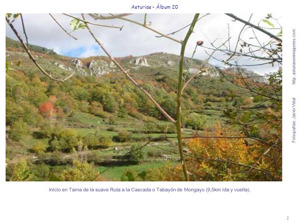 2 Asturias - Álbum 20 Fotografías: Javier Vidal http: asturiasenimagenes.com Inicio en Tarna de la suave Ruta a la Cascada o Tabayón de Mongayo (9,5km