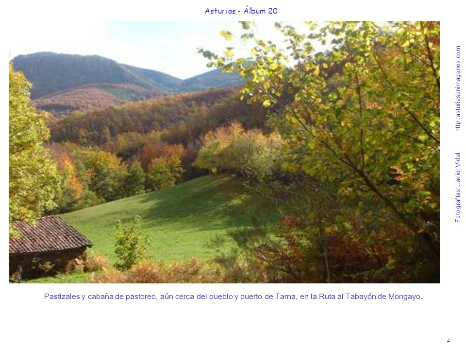 4 Asturias - Álbum 20 Fotografías: Javier Vidal http: asturiasenimagenes.com Pastizales y cabaña de pastoreo, aún cerca del pueblo y puerto de Tarna,
