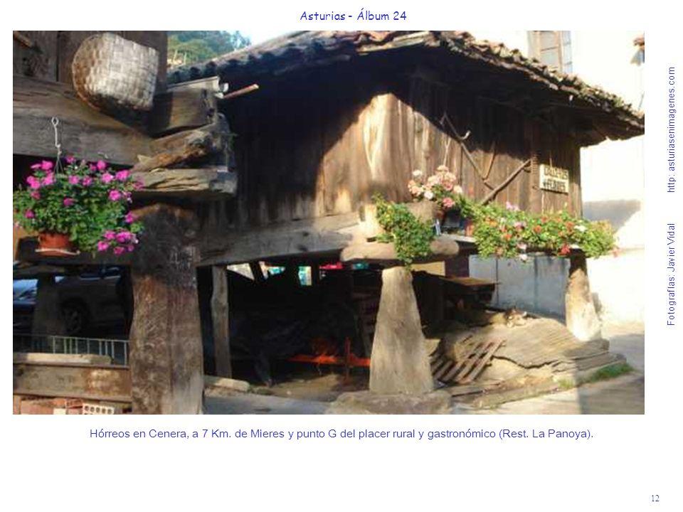 12 Asturias - Álbum 24 Fotografías: Javier Vidal http: asturiasenimagenes.com Hórreos en Cenera, a 7 Km. de Mieres y punto G del placer rural y gastro