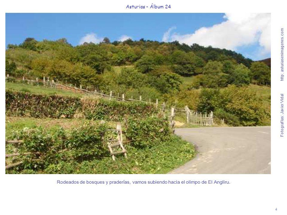 4 Asturias - Álbum 24 Fotografías: Javier Vidal http: asturiasenimagenes.com Rodeados de bosques y praderías, vamos subiendo hacia el olimpo de El Ang