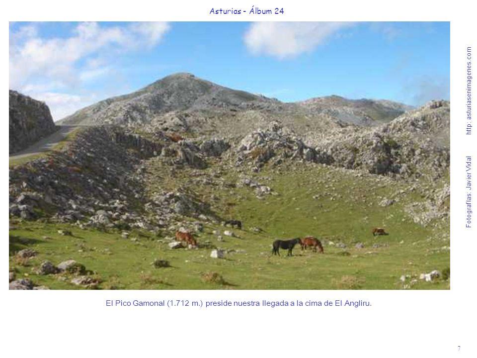 7 Asturias - Álbum 24 Fotografías: Javier Vidal http: asturiasenimagenes.com El Pico Gamonal (1.712 m.) preside nuestra llegada a la cima de El Anglir
