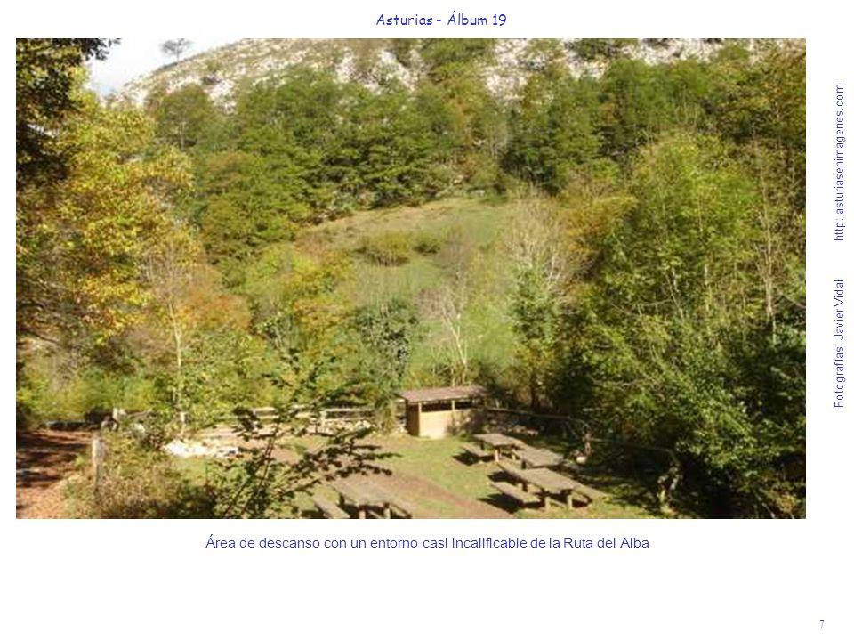 8 Asturias - Álbum 19 Fotografías: Javier Vidal http: asturiasenimagenes.com Al estrecharse el camino, el río Alba nos deleita con un variado show de sus cascadas.