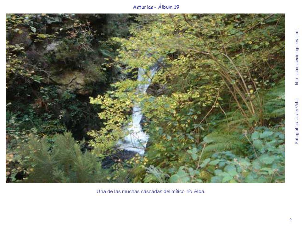 9 Asturias - Álbum 19 Fotografías: Javier Vidal http: asturiasenimagenes.com Una de las muchas cascadas del mítico río Alba.