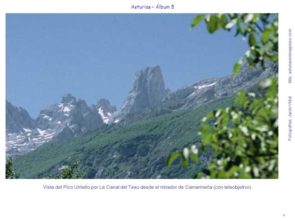 4 Asturias - Álbum 5 Fotografías: Javier Vidal http: asturiasenimagenes.com Vista del Pico Urriello por La Canal del Texu desde el mirador de Camarmeñ