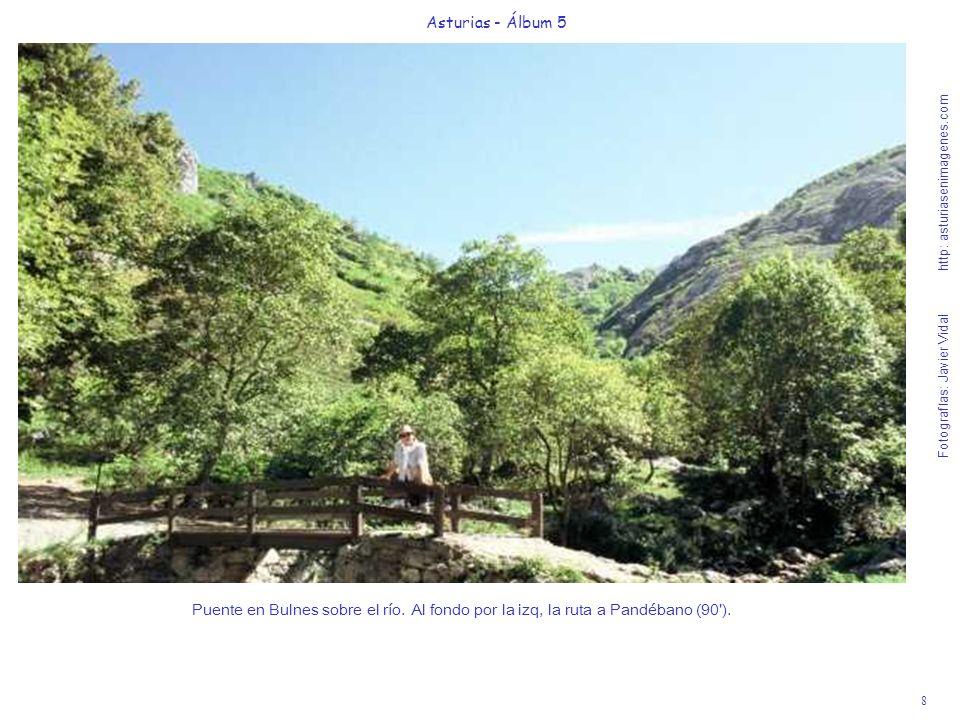8 Asturias - Álbum 5 Fotografías: Javier Vidal http: asturiasenimagenes.com Puente en Bulnes sobre el río. Al fondo por la izq, la ruta a Pandébano (9