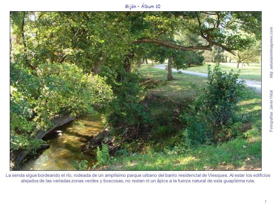 5 Gijón - Álbum 10 Fotografías: Javier Vidal http: asturiasenimagenes.com La senda sigue bordeando el río, rodeada de un amplísimo parque urbano del b