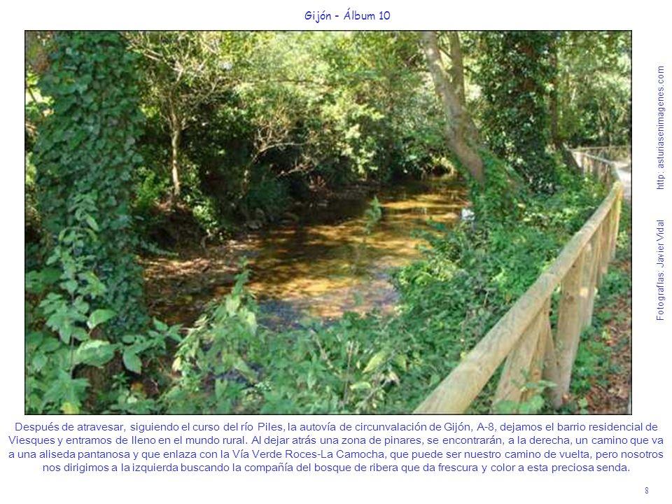 8 Gijón - Álbum 10 Fotografías: Javier Vidal http: asturiasenimagenes.com Después de atravesar, siguiendo el curso del río Piles, la autovía de circun