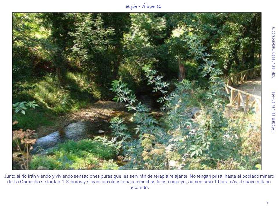 9 Gijón - Álbum 10 Fotografías: Javier Vidal http: asturiasenimagenes.com Junto al río irán viendo y viviendo sensaciones puras que les servirán de te