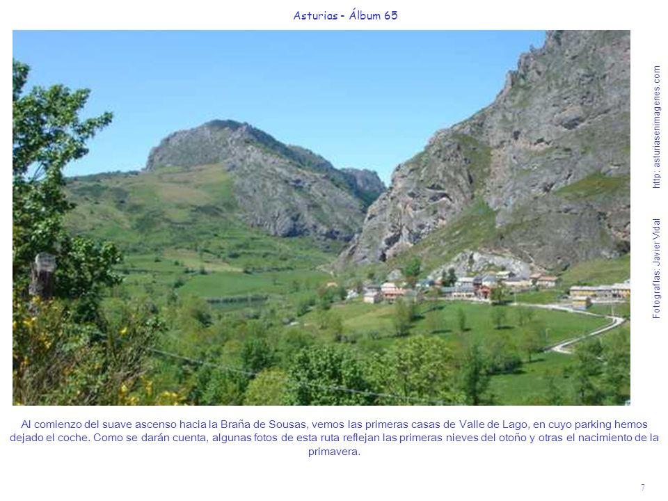 7 Asturias - Álbum 65 Fotografías: Javier Vidal http: asturiasenimagenes.com Al comienzo del suave ascenso hacia la Braña de Sousas, vemos las primera