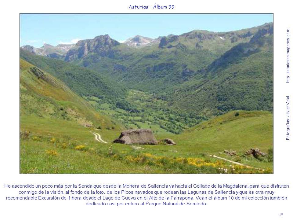 10 Asturias - Álbum 99 Fotografías: Javier Vidal http: asturiasenimagenes.com He ascendido un poco más por la Senda que desde la Mortera de Saliencia