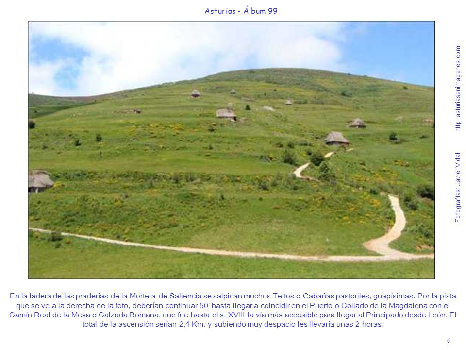 6 Asturias - Álbum 99 Fotografías: Javier Vidal http: asturiasenimagenes.com En la ladera de las praderías de la Mortera de Saliencia se salpican much