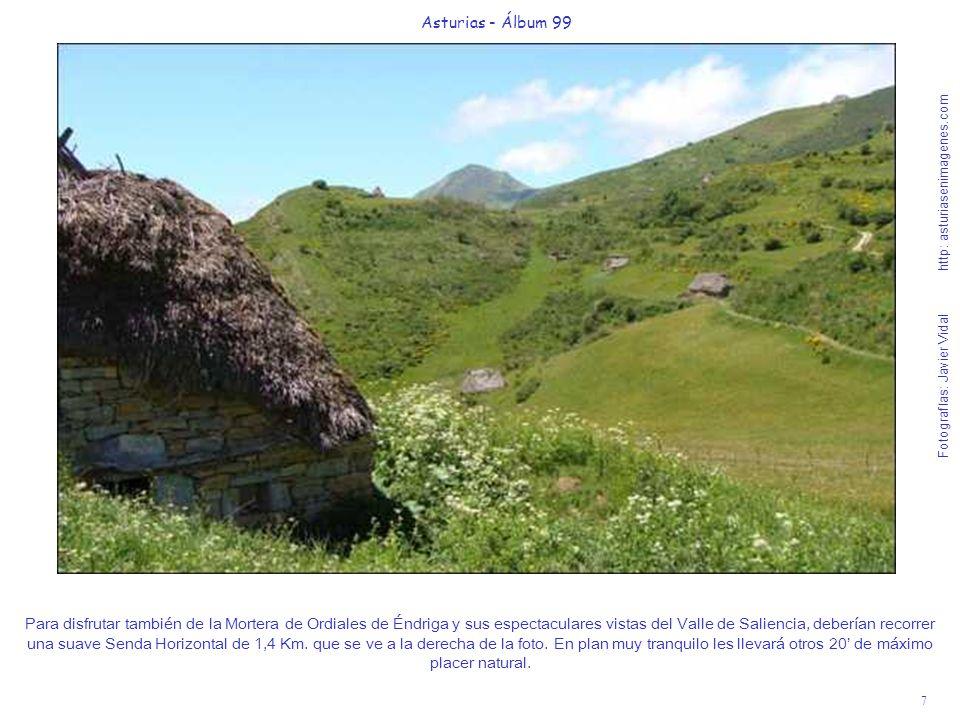 8 Asturias - Álbum 99 Fotografías: Javier Vidal http: asturiasenimagenes.com Voy a ascender un pequeño montecito; rodeado de la belleza de las flores de los piornos para hacerles las próximas fotos, sobre un acantilado espectacular.