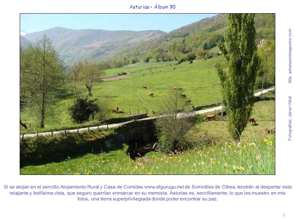 3 Asturias - Álbum 90 Fotografías: Javier Vidal http: asturiasenimagenes.com Si se alojan en el sencillo Alojamiento Rural y Casa de Comidas www.elgurugu.net de Sorrodiles de Cibea, tendrán al despertar esta relajante y bellísima vista, que seguro querrían enmarcar en su memoria.