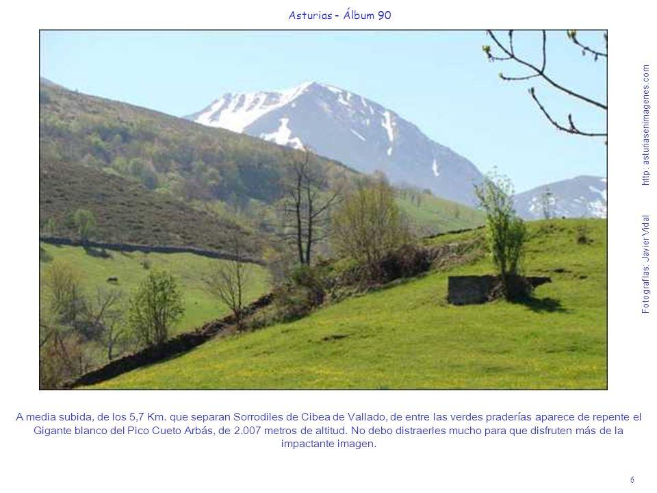 6 Asturias - Álbum 90 Fotografías: Javier Vidal http: asturiasenimagenes.com A media subida, de los 5,7 Km. que separan Sorrodiles de Cibea de Vallado