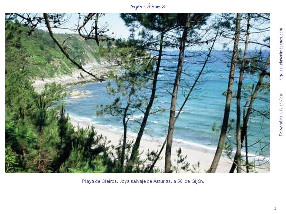 2 Gijón - Álbum 8 Fotografías: Javier Vidal http: asturiasenimagenes.com Playa de Oleiros. Joya salvaje de Asturias, a 50' de Gijón.