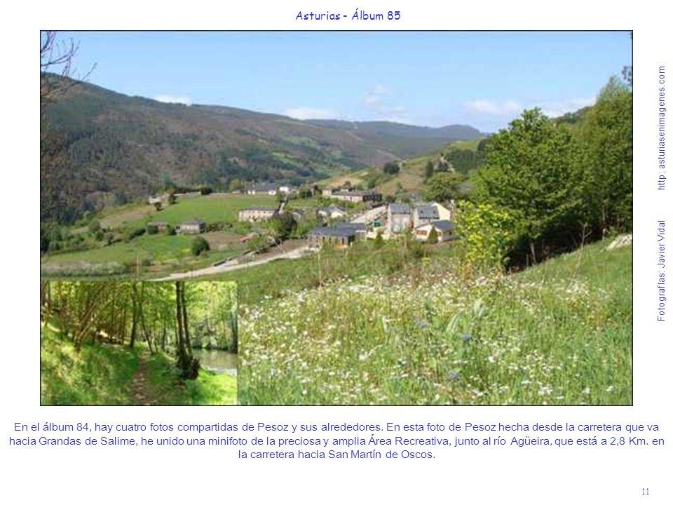11 Asturias - Álbum 85 Fotografías: Javier Vidal http: asturiasenimagenes.com En el álbum 84, hay cuatro fotos compartidas de Pesoz y sus alrededores.