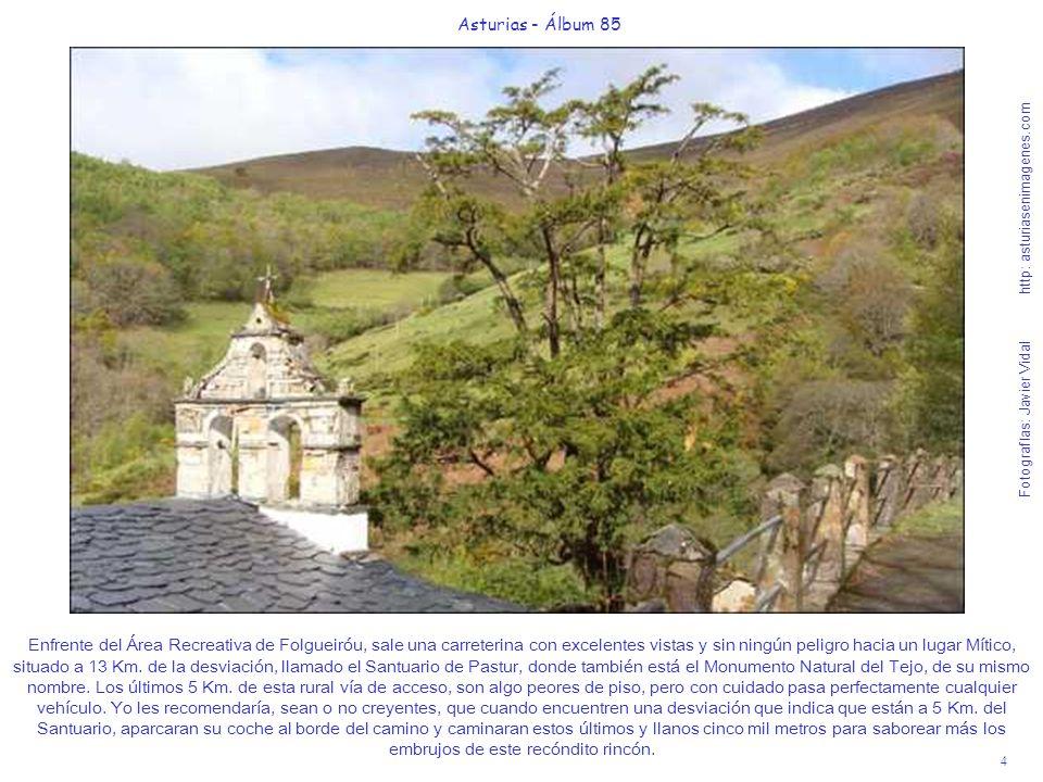 4 Asturias - Álbum 85 Fotografías: Javier Vidal http: asturiasenimagenes.com Enfrente del Área Recreativa de Folgueiróu, sale una carreterina con exce