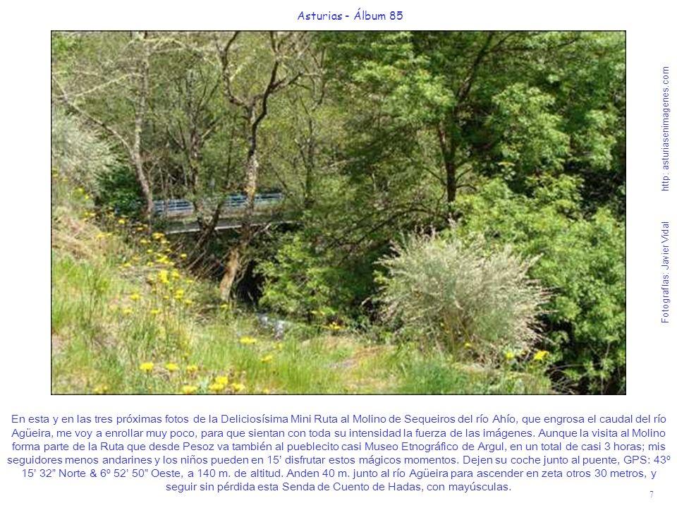 7 Asturias - Álbum 85 Fotografías: Javier Vidal http: asturiasenimagenes.com En esta y en las tres próximas fotos de la Deliciosísima Mini Ruta al Mol