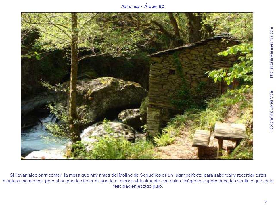 10 Asturias - Álbum 85 Fotografías: Javier Vidal http: asturiasenimagenes.com La Ruta una vez pasado el Molino, sigue unos 150 m.
