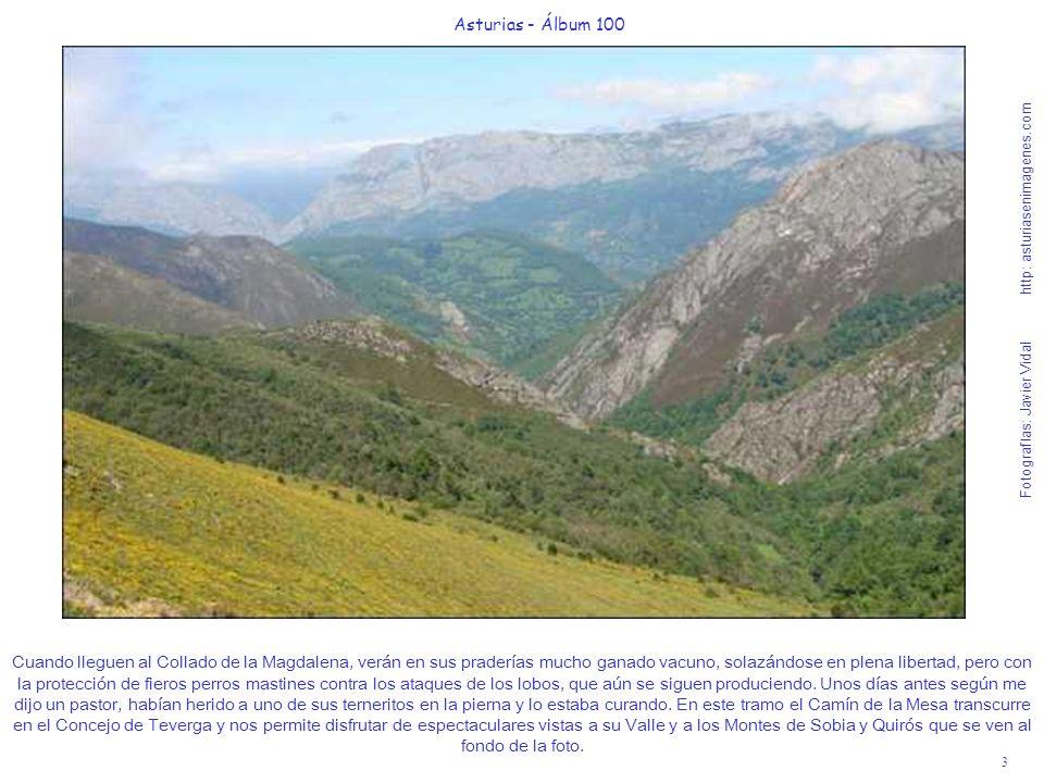 3 Asturias - Álbum 100 Fotografías: Javier Vidal http: asturiasenimagenes.com Cuando lleguen al Collado de la Magdalena, verán en sus praderías mucho