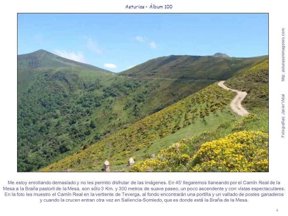 5 Asturias - Álbum 100 Fotografías: Javier Vidal http: asturiasenimagenes.com Ya pasada la portilla, que deben dejar otra vez cerrada, ven el Camín Real cómo a media ladera se dirige a la Braña de la Mesa.