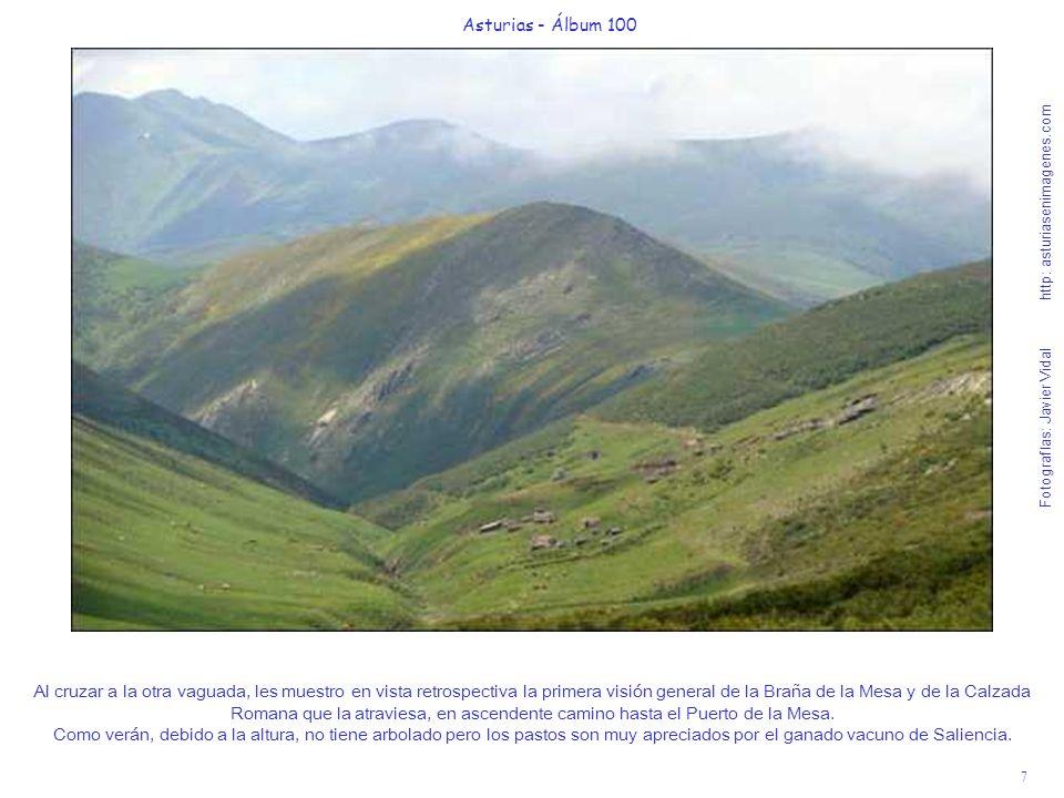 7 Asturias - Álbum 100 Fotografías: Javier Vidal http: asturiasenimagenes.com Al cruzar a la otra vaguada, les muestro en vista retrospectiva la prime
