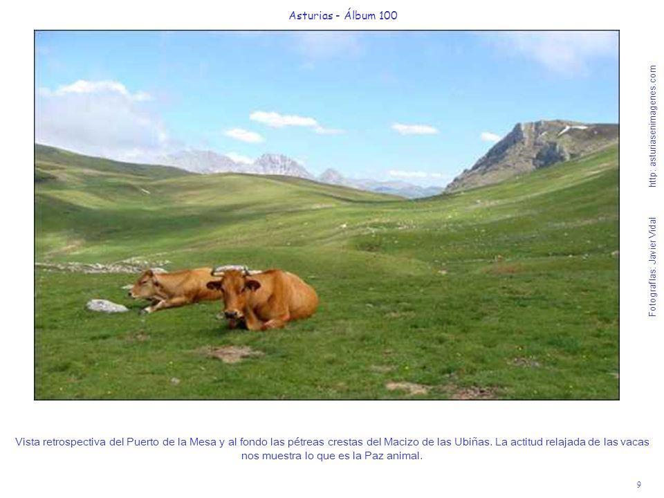 9 Asturias - Álbum 100 Fotografías: Javier Vidal http: asturiasenimagenes.com Vista retrospectiva del Puerto de la Mesa y al fondo las pétreas crestas