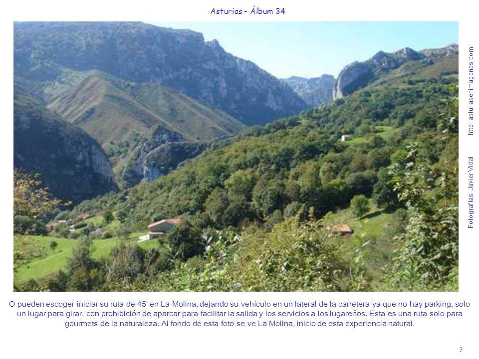 3 Asturias - Álbum 34 Fotografías: Javier Vidal http: asturiasenimagenes.com O pueden escoger iniciar su ruta de 45 en La Molina, dejando su vehículo en un lateral de la carretera ya que no hay parking, solo un lugar para girar, con prohibición de aparcar para facilitar la salida y los servicios a los lugareños.