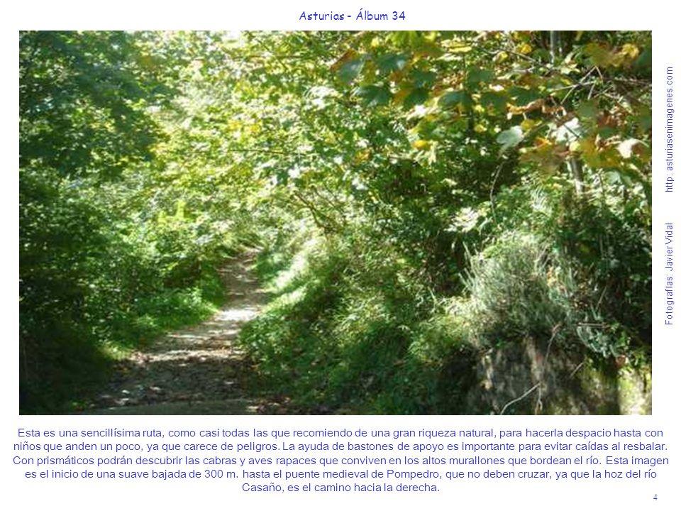 4 Asturias - Álbum 34 Fotografías: Javier Vidal http: asturiasenimagenes.com Esta es una sencillísima ruta, como casi todas las que recomiendo de una gran riqueza natural, para hacerla despacio hasta con niños que anden un poco, ya que carece de peligros.