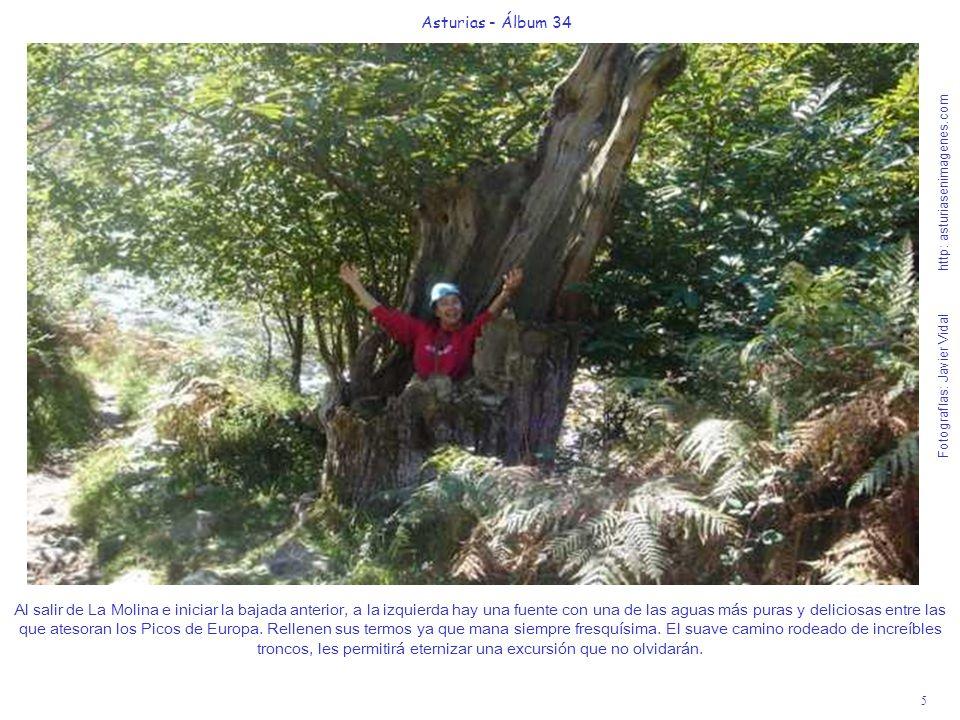 5 Asturias - Álbum 34 Fotografías: Javier Vidal http: asturiasenimagenes.com Al salir de La Molina e iniciar la bajada anterior, a la izquierda hay una fuente con una de las aguas más puras y deliciosas entre las que atesoran los Picos de Europa.