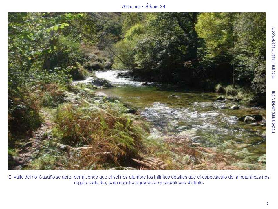 6 Asturias - Álbum 34 Fotografías: Javier Vidal http: asturiasenimagenes.com El valle del río Casaño se abre, permitiendo que el sol nos alumbre los infinitos detalles que el espectáculo de la naturaleza nos regala cada día, para nuestro agradecido y respetuoso disfrute.