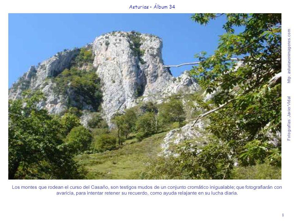 8 Asturias - Álbum 34 Fotografías: Javier Vidal http: asturiasenimagenes.com Los montes que rodean el curso del Casaño, son testigos mudos de un conjunto cromático inigualable; que fotografiarán con avaricia, para intentar retener su recuerdo, como ayuda relajante en su lucha diaria.