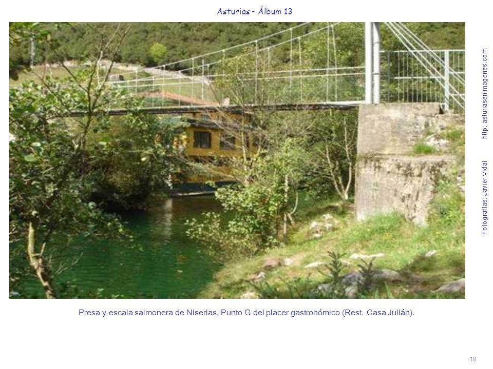 10 Asturias - Álbum 13 Fotografías: Javier Vidal http: asturiasenimagenes.com Presa y escala salmonera de Niserias, Punto G del placer gastronómico (R
