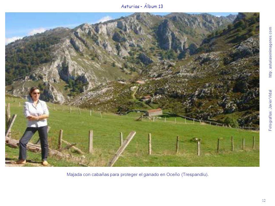 12 Asturias - Álbum 13 Fotografías: Javier Vidal http: asturiasenimagenes.com Majada con cabañas para proteger el ganado en Oceño (Trespandiu).