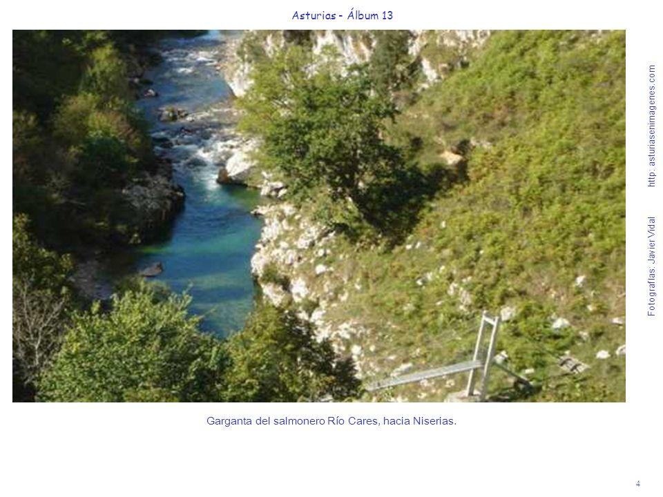 4 Asturias - Álbum 13 Fotografías: Javier Vidal http: asturiasenimagenes.com Garganta del salmonero Río Cares, hacia Niserias.