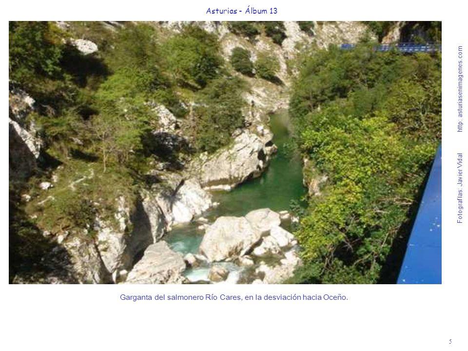 5 Asturias - Álbum 13 Fotografías: Javier Vidal http: asturiasenimagenes.com Garganta del salmonero Río Cares, en la desviación hacia Oceño.