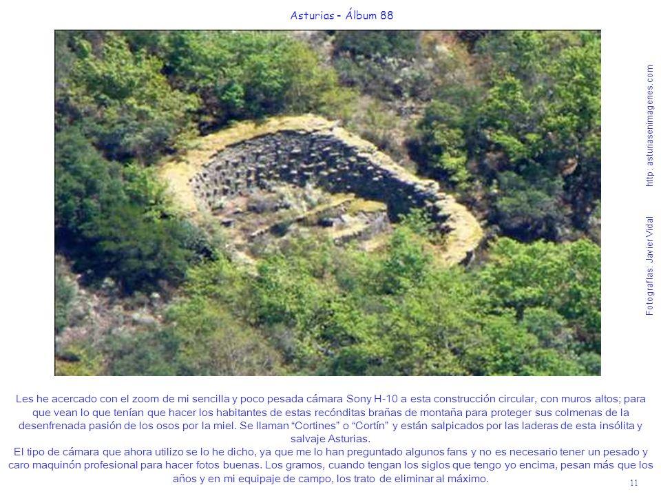 11 Asturias - Álbum 88 Fotografías: Javier Vidal http: asturiasenimagenes.com Les he acercado con el zoom de mi sencilla y poco pesada cámara Sony H-1