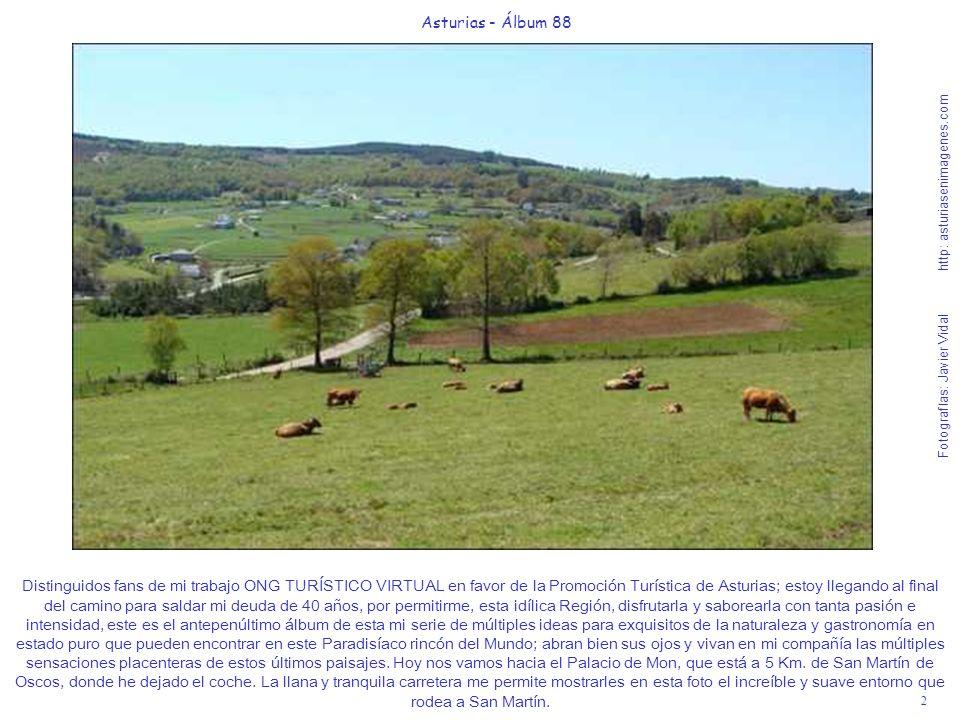 3 Asturias - Álbum 88 Fotografías: Javier Vidal http: asturiasenimagenes.com Como San Martín está en un altiplano bastante abierto, pero a más de 600 metros de altitud, por la noche refresca algo.