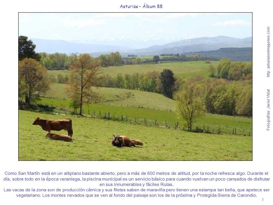 3 Asturias - Álbum 88 Fotografías: Javier Vidal http: asturiasenimagenes.com Como San Martín está en un altiplano bastante abierto, pero a más de 600