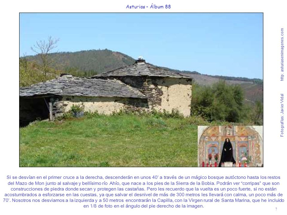 8 Asturias - Álbum 88 Fotografías: Javier Vidal http: asturiasenimagenes.com Nada más sobrepasar la Capilla, detrás de unos muros de piedra que delimitaban las propiedades agrícolas, les muestro la ladera alta del bosque por el que se inicia el descenso al derruido Mazo de Mon.