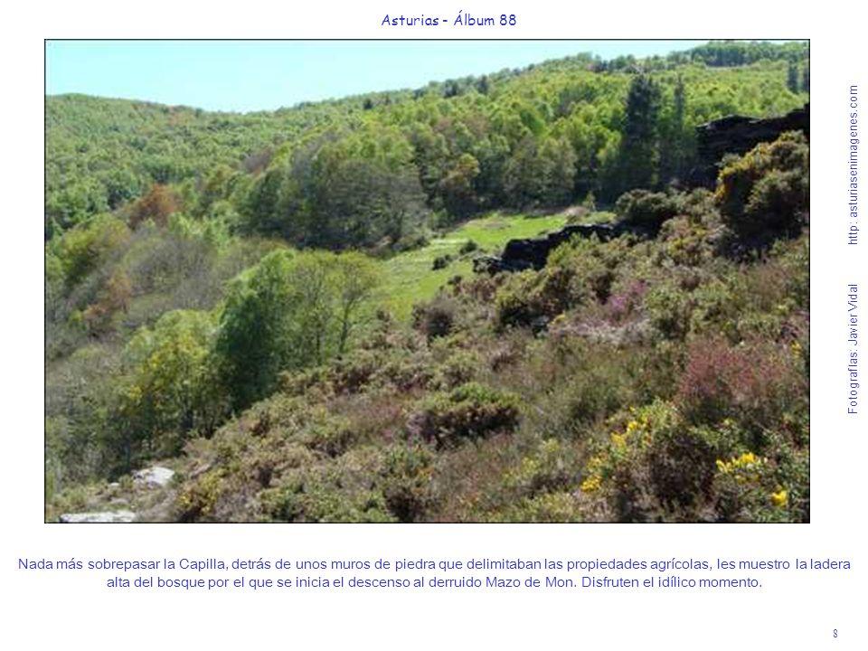 8 Asturias - Álbum 88 Fotografías: Javier Vidal http: asturiasenimagenes.com Nada más sobrepasar la Capilla, detrás de unos muros de piedra que delimi
