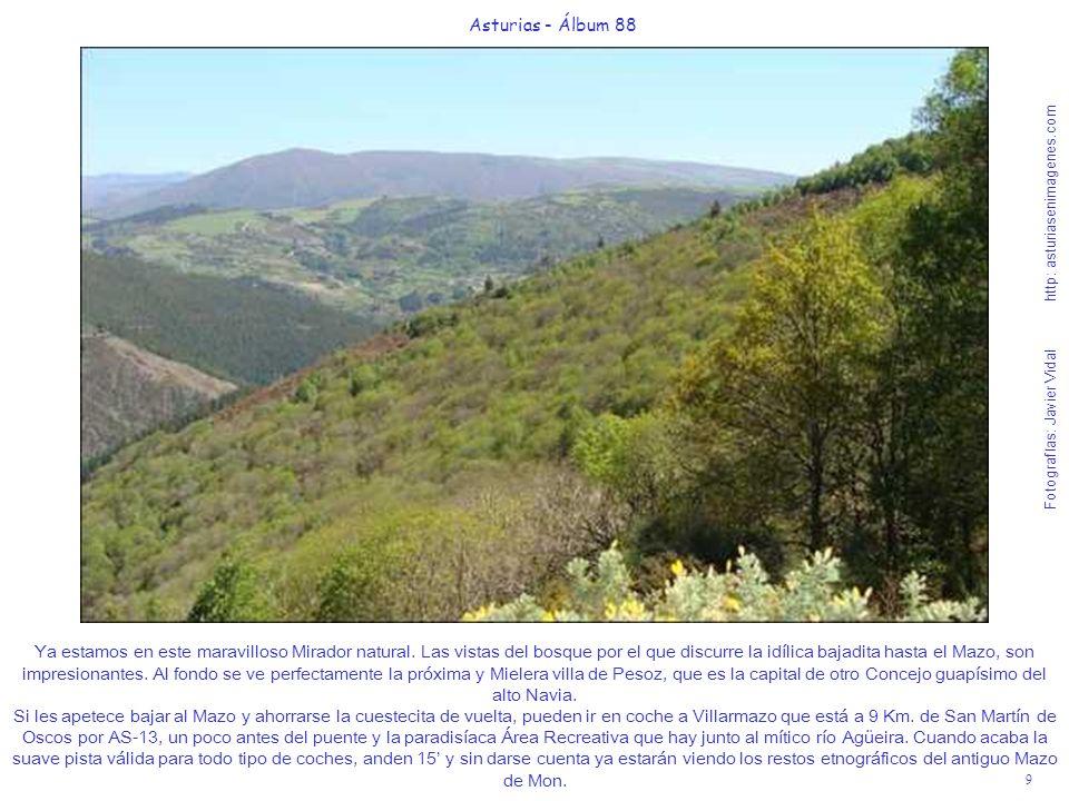 9 Asturias - Álbum 88 Fotografías: Javier Vidal http: asturiasenimagenes.com Ya estamos en este maravilloso Mirador natural. Las vistas del bosque por