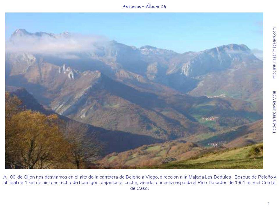 5 Asturias - Álbum 26 Fotografías: Javier Vidal http: asturiasenimagenes.com En la Majada Les Bedules, repleta habitualmente de ganado pastando, y entre bellísimas cimas, iniciamos la suave ruta de 80 hacia la majada-collada de Granceno y el mítico Bosque de Peloño.