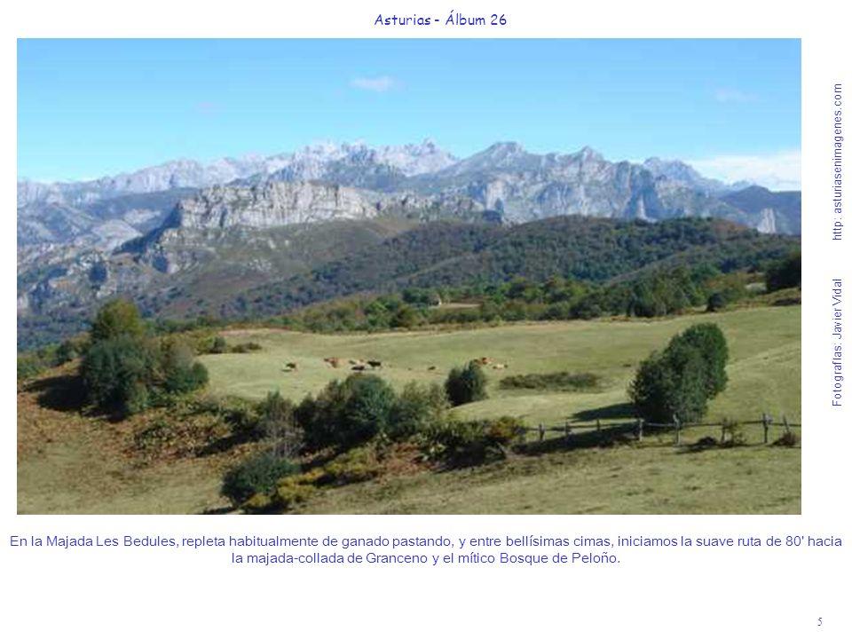 6 Asturias - Álbum 26 Fotografías: Javier Vidal http: asturiasenimagenes.com Recién dejado a la izquierda el camino que baja a la aldea casi perdida de Víboli, a los 25 de suave andar, nos emocionará esta increíble vista de los Picos de Europa con las primeras nieves del otoño.