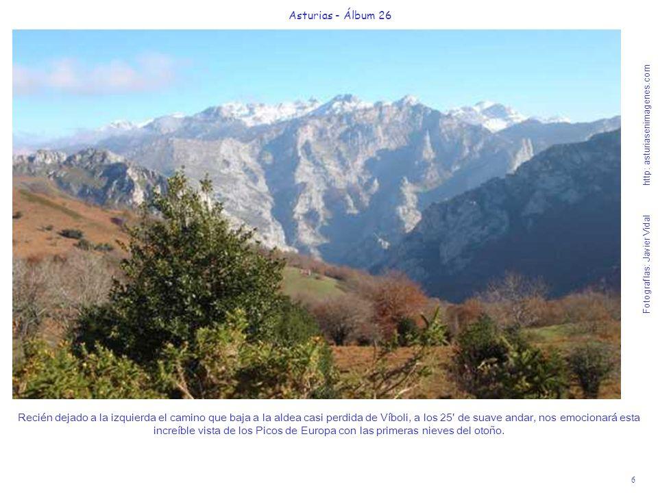 6 Asturias - Álbum 26 Fotografías: Javier Vidal http: asturiasenimagenes.com Recién dejado a la izquierda el camino que baja a la aldea casi perdida d